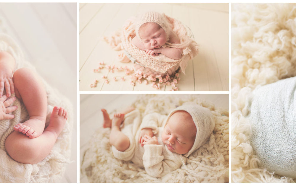 New pricing at patricia anderson photography chicago il newborn photographers