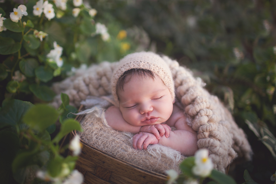 Chicago Newborn Photographers | Patricia Anderson Photography